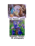 Art Show: 3D Pastels 3D Photography @ Converse Free Library | Lyme | New Hampshire | United States